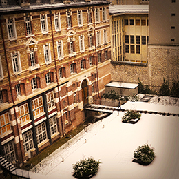 cour hiver